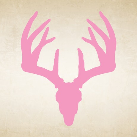 Pink Whitetail Buck Skull Decal Mossy Oak Graphics