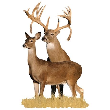 Double Drop Tine Buck With Doe Cutout Mossy Oak Graphics