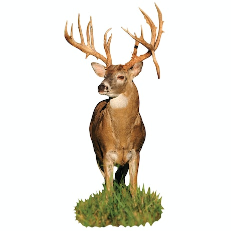 Monster Whitetail Buck With Drop Tyne Cutout Mossy Oak