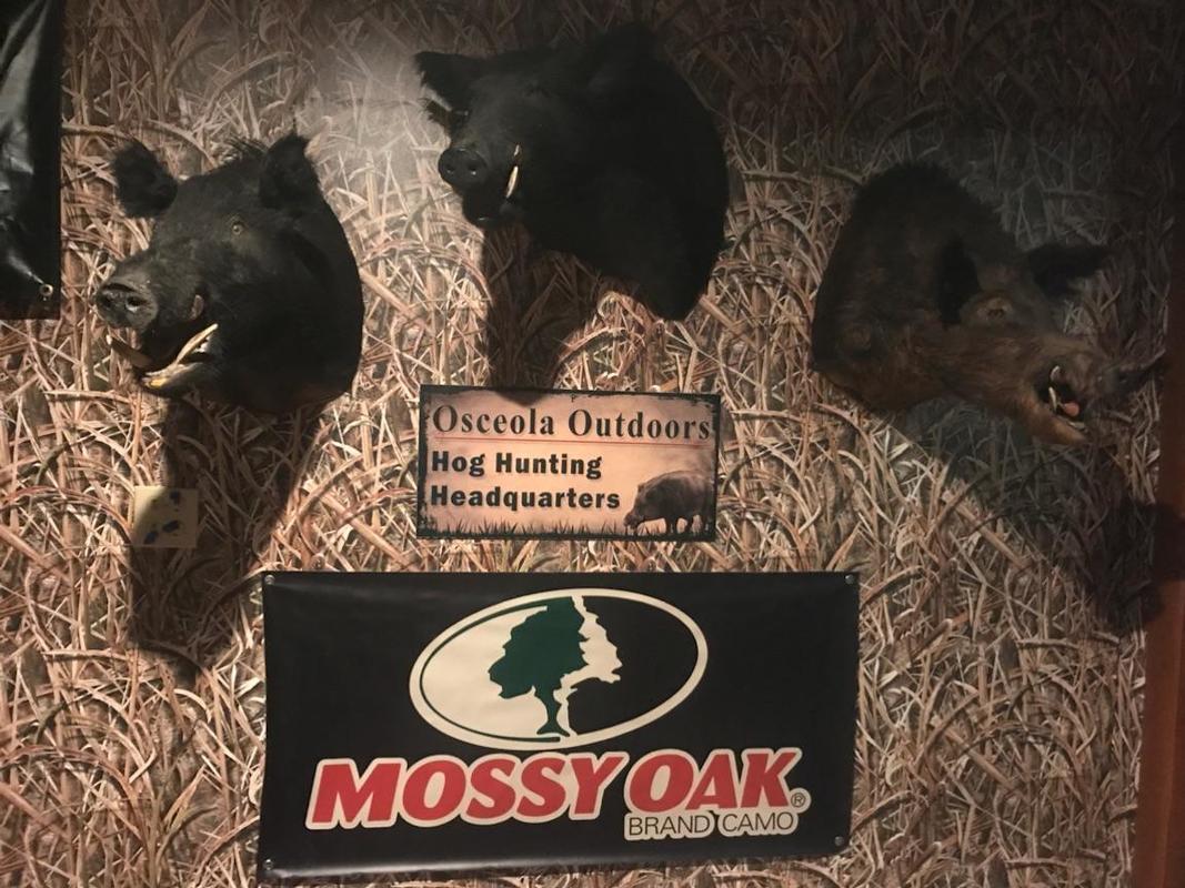 Mossy Oak Graphics 14026-BLK Wallpaper